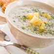 Dill soup — Stock Photo #18797577