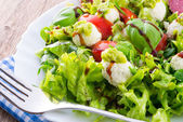 Vegetable salad with cheese — Foto de Stock