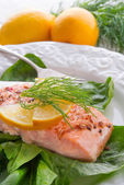 Grilled salmon fillets on spinach — Stock Photo