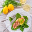 Grilled salmon fillets on spinach — Stock Photo #23878747