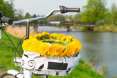 Bikes and lei flower wreath — Stok fotoğraf