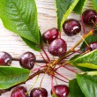 Sweet cherry — Stock Photo #28195901