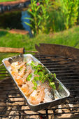 Grilled trout — Stock Photo