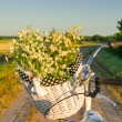 Baskets with daisies at sunset — Stock Photo #28587545