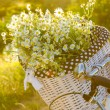 Baskets with daisies at sunset — Stock Photo #28620035