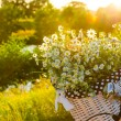 Baskets with daisies at sunset — Stock Photo #28620051
