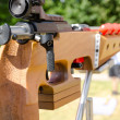 Stock Photo: Sporting rifle