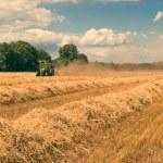 Harvest time - vintage — Stock Photo #29781043