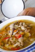 Vegetarian parasol mushroom soup — Stock Photo