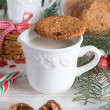 Milk and cookies for santa — Stock Photo #34543583