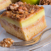 Apple strudel with vanilla pudding and nuts — Stockfoto