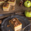 Apple strudel with vanilla pudding and nuts — Stock Photo #35110257