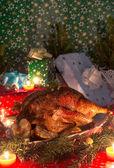 Ganso de natal — Foto Stock