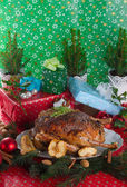 Christmas goose — Stock Photo