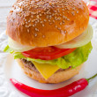 Hamburger — Stock Photo #40011309