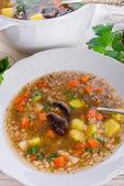 Barley Soup (Krupnik) — Fotografia Stock
