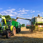 Tractors and harvesting — Stock Photo