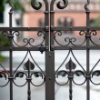 Elements wrought fence - Stock Photo