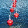 Red buoy for mooring boats on the water — Stock Photo