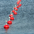 Stock Photo: Red buoy for mooring boats on the water