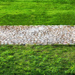 The road of the stones in the middle of a green lawn - Stock Photo