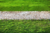 The road of the stones in the middle of a green lawn — Stock Photo