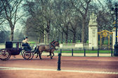 The carriage and horses in London at Buckingham Palace — Stock Photo