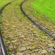 Rails on the pavement and green grass — Stock Photo #49786139