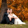 Stock Photo: Happy bride and groom in a park. Wedding couple