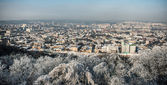 Panorama of the old city Lvov — Stock Photo