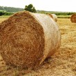 Haystack on the field — Stock Photo