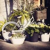 Vintage bicycle with flowers on the busket — Fotografia Stock