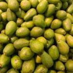 Avocado background — Stock Photo