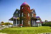 House of flowers — Стоковое фото