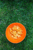 Corn nachos on the picnic — Foto de Stock