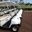 Golf Carts — Stock Photo #18871305