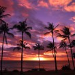 HawaiiSunset Molokai Hawaii — Stock Photo #18871375