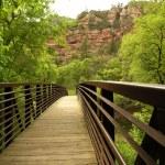 Oak Creek Canyon Bridge — Stock Photo #18871505