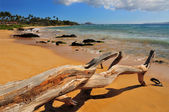 Mokapu Beach Park, Maui Hawaii — Stock Photo