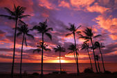Hawaiian Sunset Molokai Hawaii — Stock Photo
