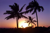 Tropical Hawaiian Sunset — Stock Photo