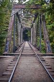 Old Train Bridge — Stock Photo