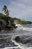 Waianapanapa State Park, Hana, Hawaii — Stock Photo