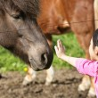 Girl with horse - Stock Photo