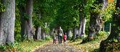 Famille marche dans la forêt — Photo