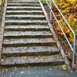 Staircase  in autumn - Stock Photo