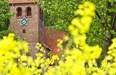 Kyrkan i danmark — Stockfoto