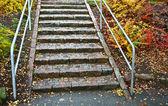 Merdiven güz — Stok fotoğraf