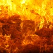 Stock Photo: Combustion of waste in furnace
