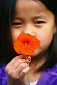 Child with daisy flower — Stock Photo